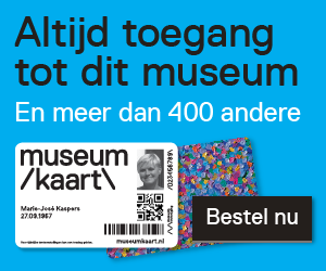 mk banner museum site blauw medium rectangle